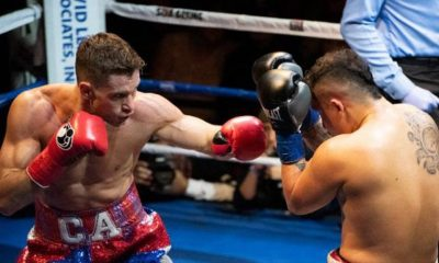 fights: Algieri vs Hernandez