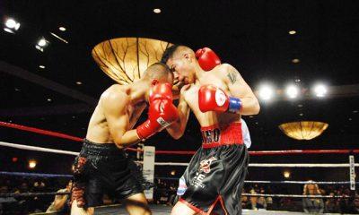 Fight Results Montebello