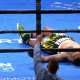 Wilder Knocks Out Breazeale