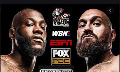 Wilder-Fury-2-Points-to-Ponder