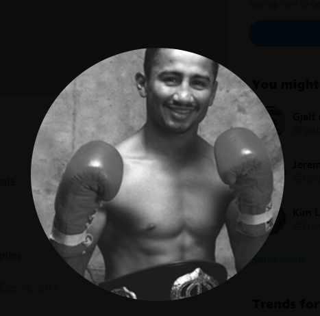 Art-of-Boxing-Series-Paulie-Ayala