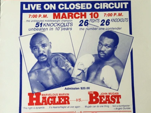When-the-Beast-Ruled-Boxing-in-Tampa